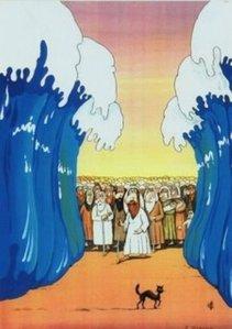 Red Sea Superstitous